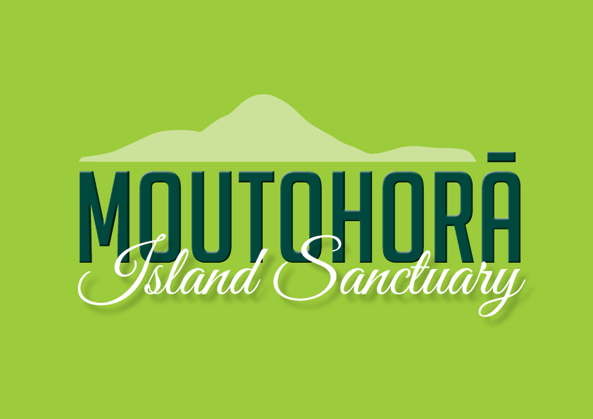 Moutohora Island Tours - Moutohora Island Tours offer the opportunity to explore New Zealand most active volcano, Whakaari/White Island.